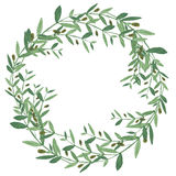 Watercolor olive wreath. Stock Photo