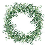 Watercolor olive wreath. Stock Photography