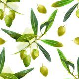 Watercolor olives pattern Stock Photo