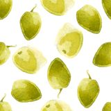 Watercolor olives pattern Stock Images