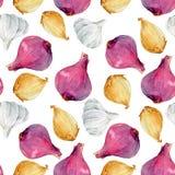 Watercolor onion pattern Stock Image