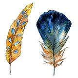 Watercolor orange and blue bird feather from wing isolated. Watercolour feathers background illustration element. royalty free illustration