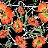 Watercolor orange gazania flowers. Floral botanical flower. Seamless background pattern. Fabric wallpaper print texture. Aquarelle wildflower for background stock illustration