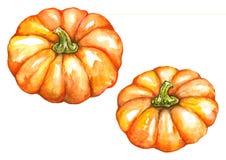 Watercolor orange pumpkin vegetable Jack-o-lantern Halloween set isolated.  Stock Photography