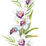 Watercolor orchid flowers Stock Image