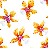 Watercolor orchid flowers tropical pattern. Seamless pattern with watercolor orchid flowers and tropical leaves Royalty Free Stock Image