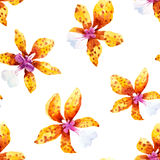 Watercolor orchid flowers tropical vector pattern vector illustration