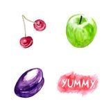 Watercolor organic fruits Royalty Free Stock Photos