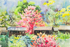 Watercolor original landscape painting yellow, green and purple pink color of sakura flowers Royalty Free Stock Photography