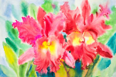 Watercolor original painting  flowers red color of orchid flower Royalty Free Stock Images