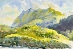 Watercolor original painting ,Landscape  colorful of   forest Royalty Free Stock Photos