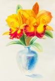 Watercolor original painting yellow red color of orchid flower Royalty Free Stock Photo
