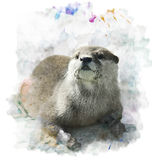 Watercolor Otter Portrait Royalty Free Stock Photos