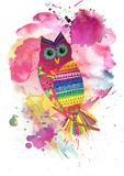 Watercolor owl collage Royalty Free Stock Image