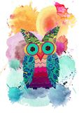 Watercolor owl collage Stock Photography