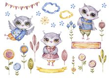 Watercolor owls, floral elements, card cover set. Cute watercolor owls and floral elements isolated on white background, card cover set, childish style stock illustration