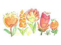 watercolor pain image. Stock Photos