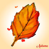 Watercolor Paint Of Autumn Leaf Stock Photography