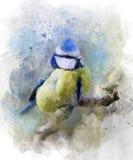 Watercolor Paint, Bird, Painting, Flightless Bird Stock Images