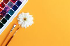 Watercolor paint, brushes and flower with white petals stock images