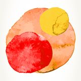 Watercolor paint circles stock images