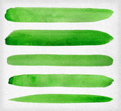 Watercolor paint green background design lines. Watercolor paint green design lines set isolated on white background vector illustration