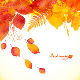 Watercolor painted autumn leaves vector background Royalty Free Stock Image