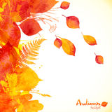 Watercolor painted autumn leaves vector background Royalty Free Stock Photography