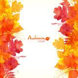 Watercolor painted autumn leaves vector background Stock Images