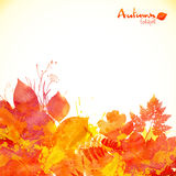 Watercolor painted autumn leaves vector background Royalty Free Stock Images