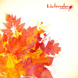 Watercolor painted autumn leaves vector background Stock Photos