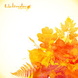 Watercolor painted autumn leaves vector background Stock Image
