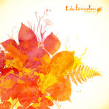 Watercolor painted autumn leaves vector background Royalty Free Stock Photo