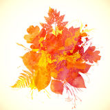 Watercolor painted autumn leaves vector banner Stock Image