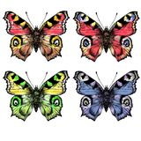 Watercolor painted butterfliesDifferent in color vector illustration