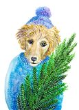 Watercolor painted christmas dog. Christmas dog in blue hat and pullover holding chrismas tree Stock Photo