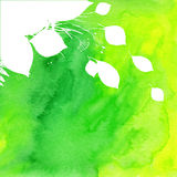Watercolor painted green background with white Stock Photos