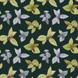 Watercolor painted leaves. Elegant leaves for art design royalty free illustration