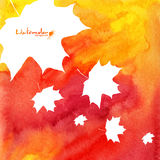 Watercolor painted maple leaves autumn background Stock Image