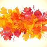 Watercolor painted orange autumn leaves background Royalty Free Stock Photo