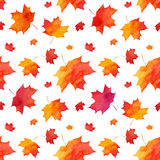Watercolor painted red autumn maple leaves pattern Stock Photos