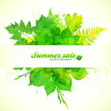 Watercolor painted summer foliage with paper Stock Images