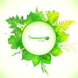 Watercolor painted summer leaves circle banner Stock Photos
