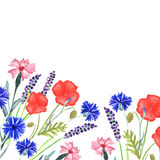 Watercolor painted wedding invitation. Cornflower, lavender, sweet pea  and poppy flowers pattern Royalty Free Stock Image