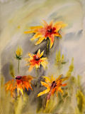 Watercolor painting. Of the beautiful flowers Stock Images