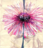 Watercolor painting. Abstract pink flower Royalty Free Stock Photography