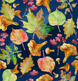 Watercolor painting. Autumn leaves Royalty Free Stock Images