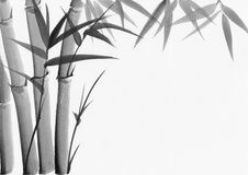 Watercolor painting of bamboo Royalty Free Stock Photography