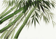 Watercolor painting of bamboo Stock Photo
