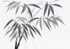 Watercolor painting of bamboo Royalty Free Stock Photo